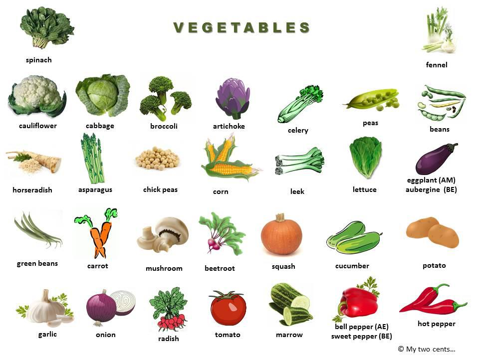 All Fruits And Vegetables Names P L Top 2019
