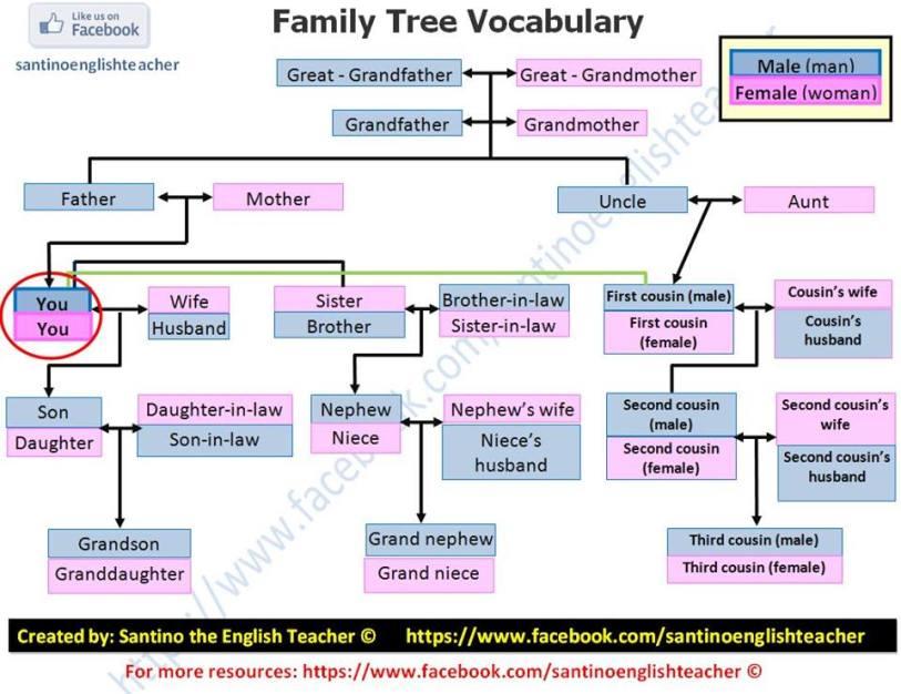family-tree2